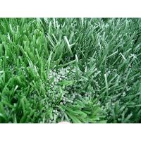Wholesale Artificial turf lawns from china suppliers