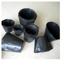 Wholesale PP Plant Pot Saucers For Seeding , Propagation Nursery Round Pot from china suppliers