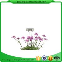 Wholesale Decorative Plant Garden Landscape Markers / Garden Plant Marker from china suppliers