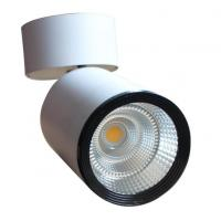Wholesale 110Lm / W 10w Indoor Use Led Ceiling Downlights Pure White Energy - Saving from china suppliers