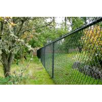 Quality Greening / Residence Safeguard Boundary Wall chain link fencing High Security , PVC Coated for sale