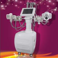 Wholesale BIO Technology Cryolipolysis Machine Two Vacuum Roller For Body Shaping from china suppliers