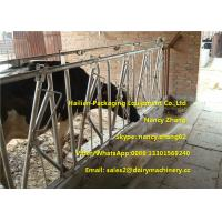 Wholesale Farm Customized Cow Headlock / Cattle Feeding Panels Hot Dip Galvanizing Pipe from china suppliers