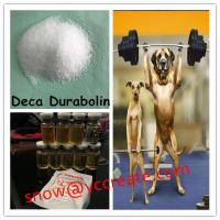 Wholesale Deca Durabolin Nandrolone Steroid Decanoate for Bodybuilding CAS No. 360-70-3 from china suppliers