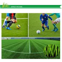 Wholesale Outdoor Monofilament Artificial Grass Lawns For Multi-sports With CE Approved from china suppliers