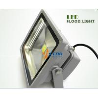 Wholesale 50Watt Outdoor Led Flood Lights Color Change Outside building lighting from china suppliers