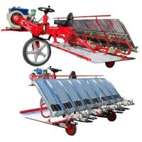 Wholesale rice transplanter 2Z-8300B from china suppliers