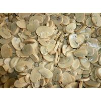 Wholesale natural freeze dried matsutake mushroom slices vegetable from china suppliers