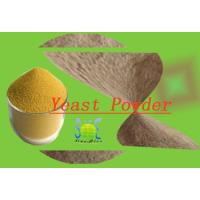 Wholesale Animal Feed Additive Nutritional Yeast Powder With 40% Crude Protein SYE-PO40 from china suppliers