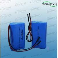 Wholesale LiFePO4 Rechargeable Lithium Batteries 6.4V 500mAh For Solar / Warning Lamp from china suppliers