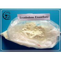 Wholesale Trenbolone Enanthate Oral Anabolic Raw Steroids CAS 10161-33-8 from china suppliers