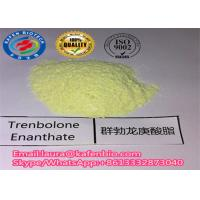 Wholesale Pharmaceutical Trenbolone Steroids 10161-33-8 Trenbolone Enanthate / Parabolan for Weight Loss from china suppliers