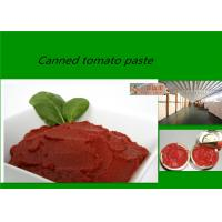 Wholesale Red Delicious Fresh Tomato Sauce  Brix 28 - 30% With Excellent Taste from china suppliers