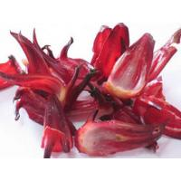 Wholesale Roselle Extract Anthocyanins5%,25% UV  promote blood cell destruction from china suppliers