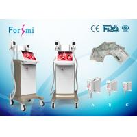 Wholesale fat freezing cryolipolysis slimming machine with 2 cryo handles working together 15 inch touch screen 1800w from china suppliers