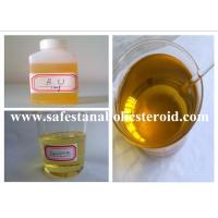 Wholesale Muscle Building Injectable Anabolic Steroids Equipoise  Boldenone Undecylenate 300mg/ml from china suppliers