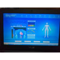 Wholesale Romanian Language Software Version 44 Reports Quantum Body analyzer Silver Color Box from china suppliers