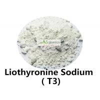 Wholesale L-Triiodothyronine / Cytomel T3 Liothyronine Sodium Organic Herbal Weight Loss Steroid 55-06-1 from china suppliers