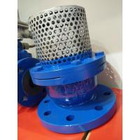 Wholesale PN16 Cast Iron Flanged Foot Valve With Stainless Steel Screen from china suppliers