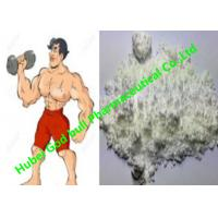 Wholesale Bodybuilding Androgenic Anabolic Steroids Powders Nandrolone Cypionate 601-63-8 from china suppliers