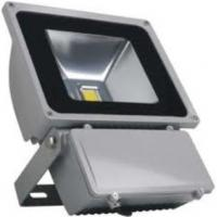 Wholesale 100W led flood light from china suppliers