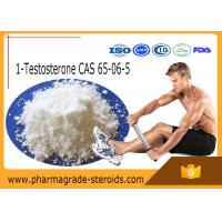 Wholesale 65-06-5 Testosterone Anabolic Steroid 1-Testosterone 1-Test Cyp ( Dihydroboldenone ) from china suppliers