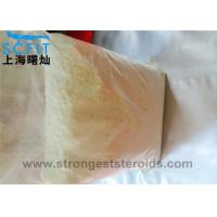 Quality Healthy Nature Androgenic Steroid 99.9% powder Androsterone for Man Muscle Growth for sale