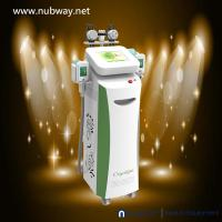 Wholesale Best Effect Non Surgical 5 Handles Freezing Fat Body Slimming Cryolipolysis Machine 2014 from china suppliers