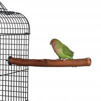 Quality Natural Parrot Perch for budgies, cockatiels and other similar sized birds for sale