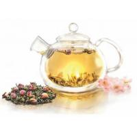 Wholesale Glass Tea Pot with Filter 750ml from china suppliers