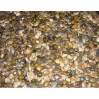 Wholesale Pebble Stone Mixed (LY-017) from china suppliers
