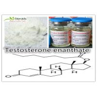Wholesale Anabolic Testosterone Enanthate Bulk Steroid Powders Primoteston-Depot 315-37-7 for Tablet from china suppliers