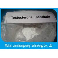 Wholesale Raw Chemical Testosterone Anabolic Steroid Hormone , Testosterone Enanthate Powder Bodybuilding from china suppliers