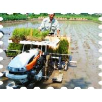 Quality Walking Type Rice Transplanter for sale