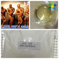 Wholesale Yellow Liquid injecting anabolic steroids Test Propion Testosterone Propionate 100MG/ML from china suppliers