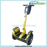 Wholesale Two Wheeled Self Balance Electric Scooter Free Standing Segway I2 47Kg from china suppliers