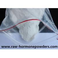 Wholesale 99% Purity Nandrolone Undecylate Raw Steroids Powder for Muscle Building , ISO9001 from china suppliers