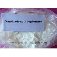 Wholesale Nandrolone Propionate Raw Steroid Powders Muscle Gains CAS 7207-92-3 from china suppliers