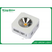 Wholesale Custom White Greenhouse Cree Led Plant Grow Lights High Lumen from china suppliers