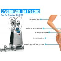 Wholesale Cryolipolysis Weight Loss Equipment Slimming Machine from china suppliers