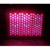 Wholesale Commercial 90 watt / 150W LED Plant Growing Ligh Red / Blue 300mA 2800 - 7000K from china suppliers