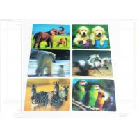 Wholesale Waterproof  3D Fridge Magnets PP / PET Lenticular Flip Effect Magnet from china suppliers