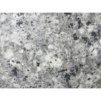 Wholesale Pearl White Granite Kitchen Island top , Bullnose granite kitchen countertops from china suppliers