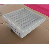 Wholesale Emergency Gas Station Canopy Lighting Anti Explosion IP65 Outdoor from china suppliers