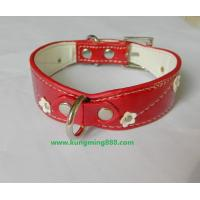 Wholesale  Dog collars,leather pet collars,dog leashes,pet collars,rhinstone dog collars,dog accessories1 from china suppliers