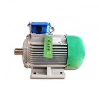 China 0.5KW-5000KW 20rpm-3000rpm Low Rpm Permanent Magnet Generator for Wind Turbine on sale
