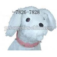 Wholesale Leather Spike Dog Collars(AF7828) from china suppliers