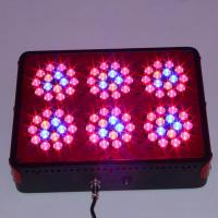 Wholesale Wholesale Red Blue 270w P series LED Grow Light Upgrated Apollo plant growing lamp from china suppliers