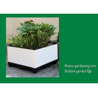 Wholesale Plastic Garden Square Planter Boxes , Outdoor White Rectangular Planter Box from china suppliers