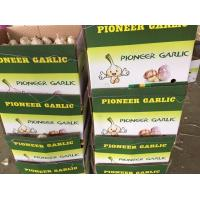 Quality 2017 year new crop china garlic with lower price for sale